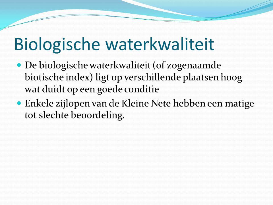 Biologische waterkwaliteit