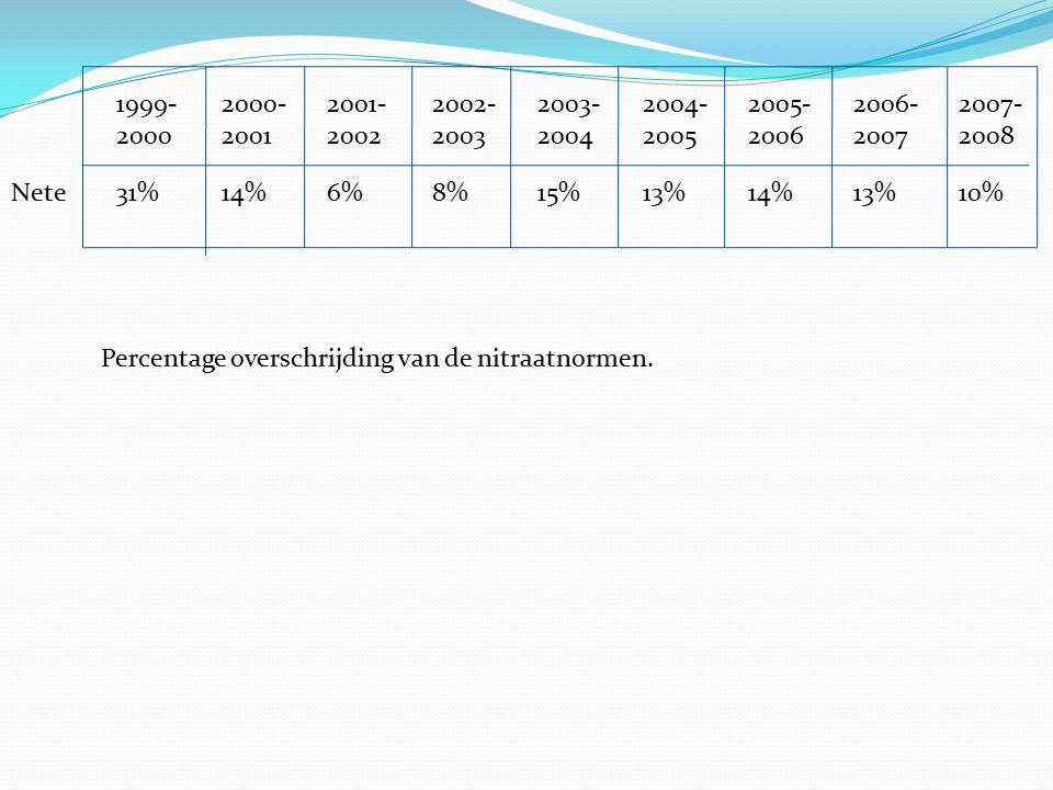 1999- 2000- 2001- 2002- 2003- 2004- 2005- 2006- 2007- 2000 2001 2002 2003 2004 2005 2006 2007 2008 Nete 31% 14% 6% 8% 15% 13% 14% 13% 10%
