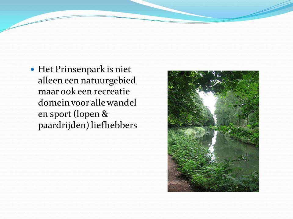 Het Prinsenpark is niet alleen een natuurgebied maar ook een recreatie domein voor alle wandel en sport (lopen & paardrijden) liefhebbers
