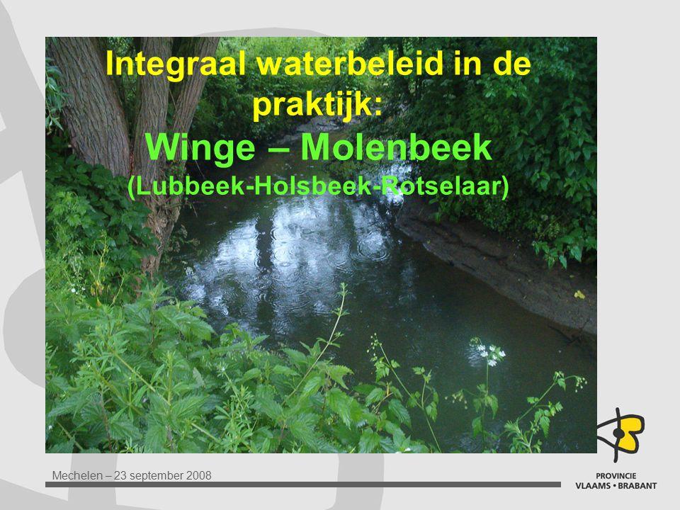 Integraal waterbeleid in de praktijk: Winge – Molenbeek (Lubbeek-Holsbeek-Rotselaar)