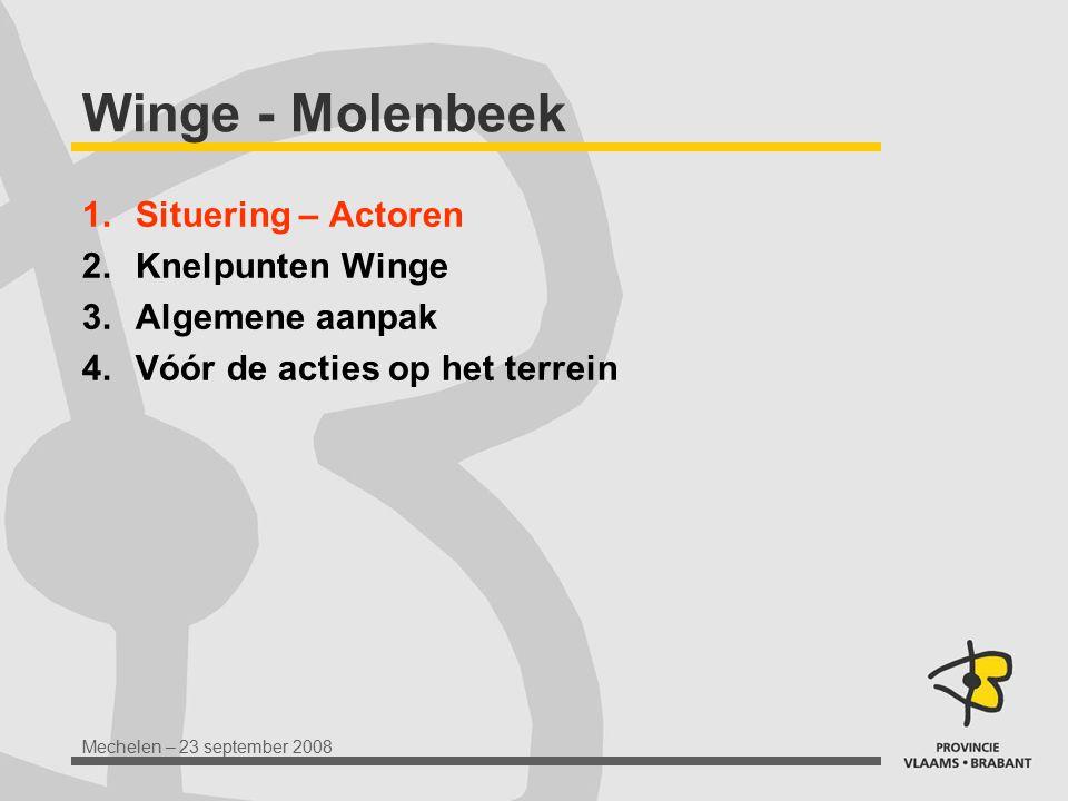 Winge - Molenbeek Situering – Actoren Knelpunten Winge Algemene aanpak