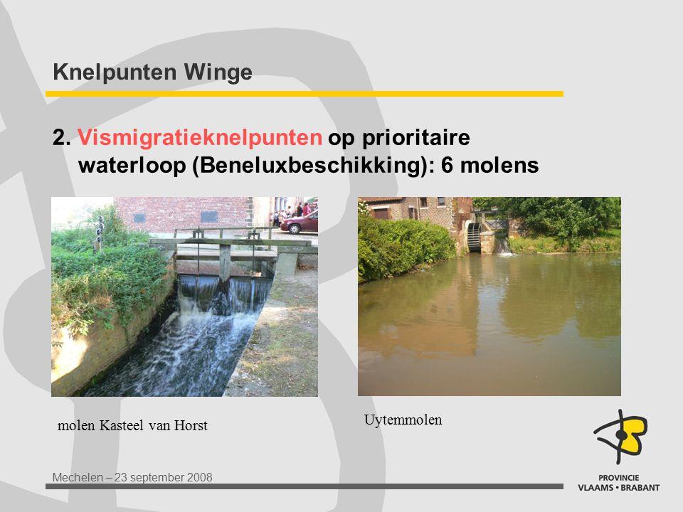 Knelpunten Winge 2. Vismigratieknelpunten op prioritaire waterloop (Beneluxbeschikking): 6 molens. Uytemmolen.