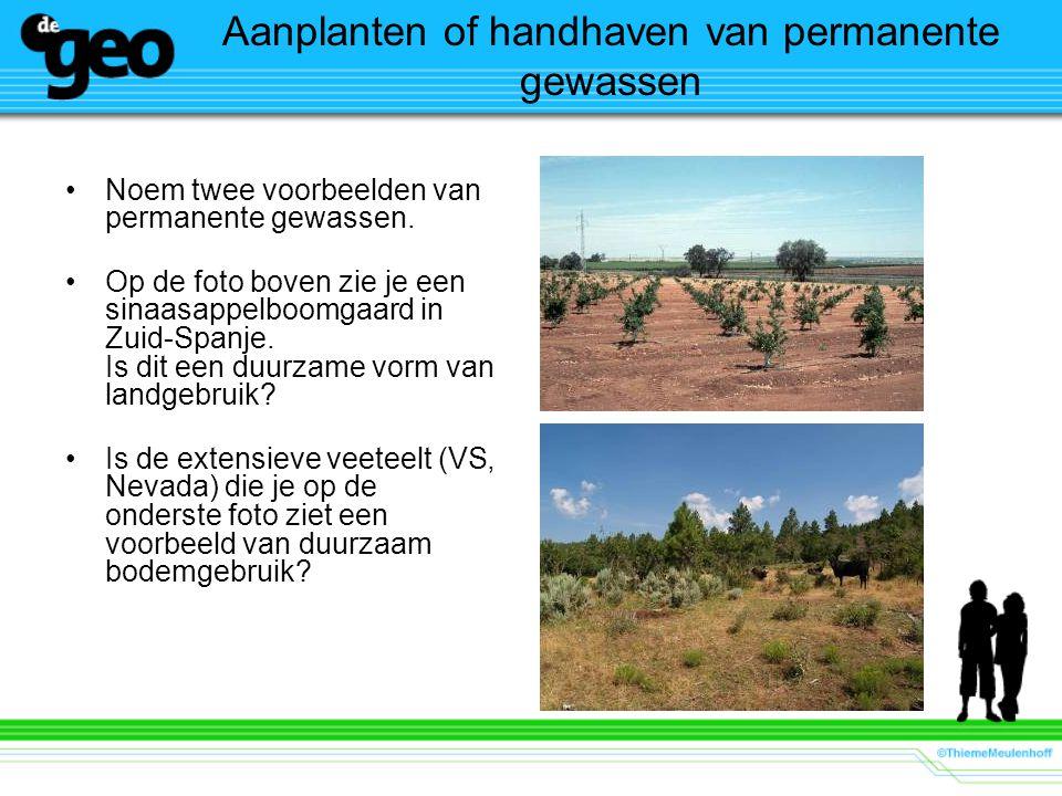 Aanplanten of handhaven van permanente gewassen
