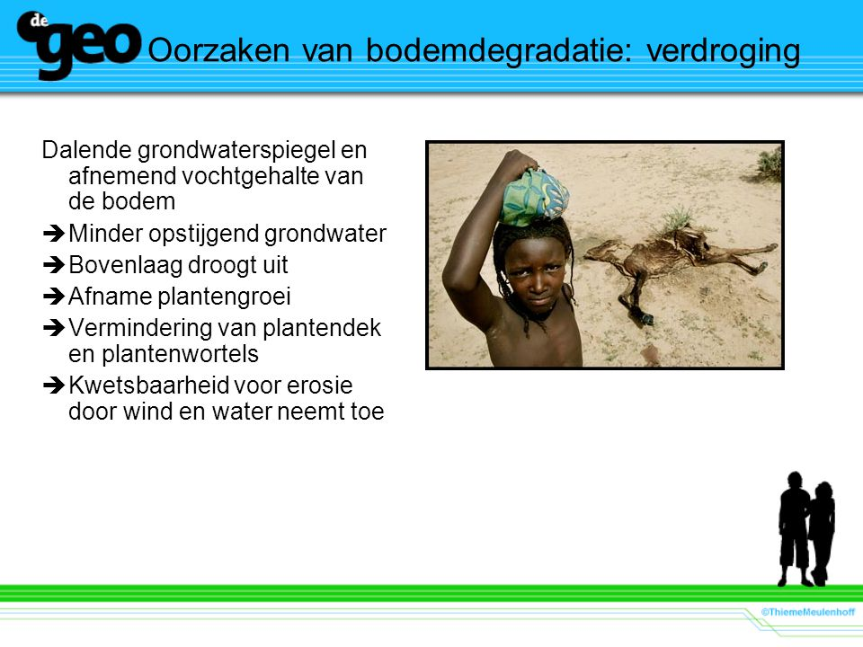 Oorzaken van bodemdegradatie: verdroging