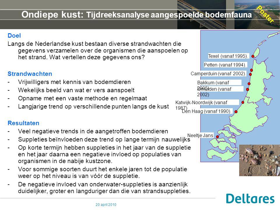 Ondiepe kust: Tijdreeksanalyse aangespoelde bodemfauna