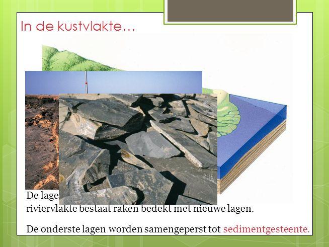 In de kustvlakte… De lagen sediment waaruit de