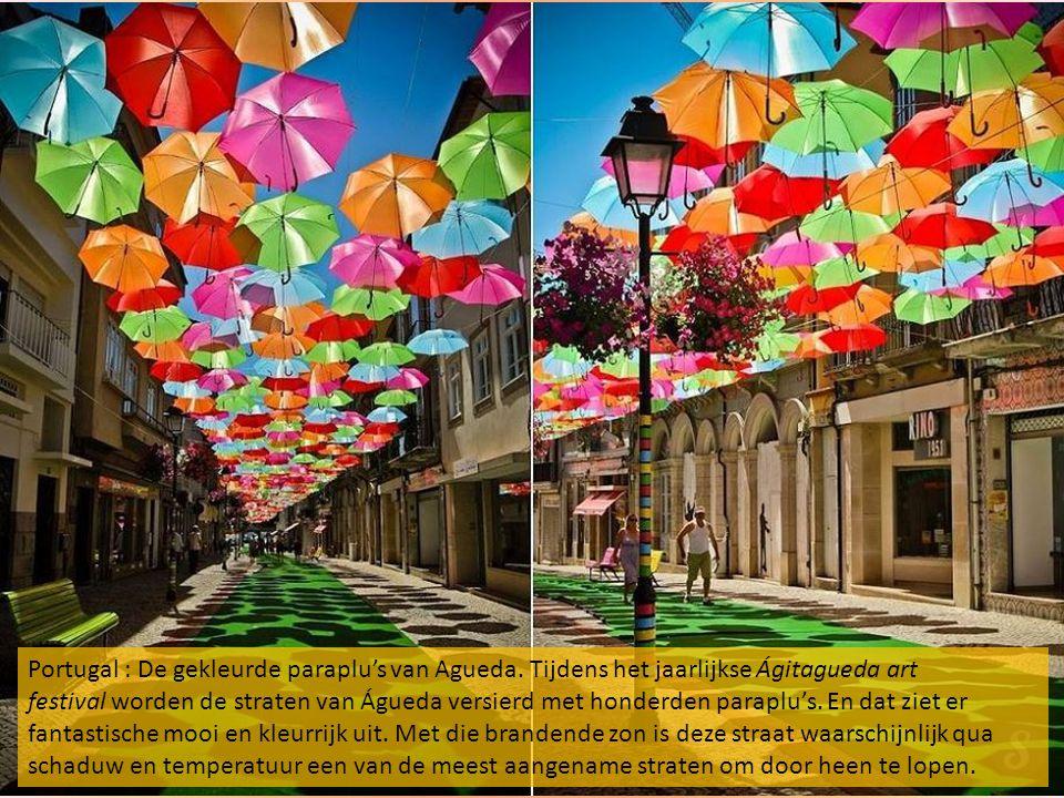 Portugal : De gekleurde paraplu's van Agueda