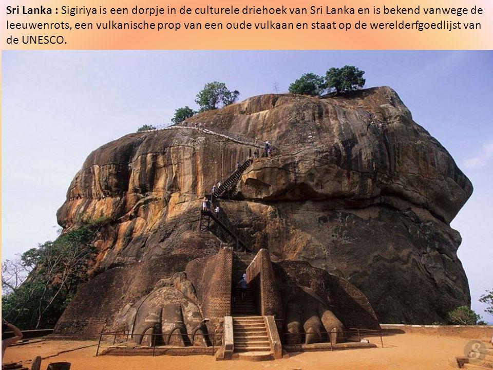 Sri Lanka : Sigiriya is een dorpje in de culturele driehoek van Sri Lanka en is bekend vanwege de leeuwenrots, een vulkanische prop van een oude vulkaan en staat op de werelderfgoedlijst van de UNESCO.