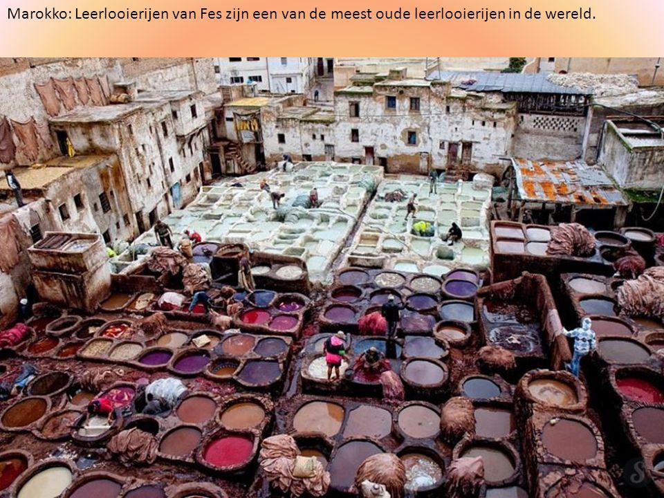 Marokko: Leerlooierijen van Fes zijn een van de meest oude leerlooierijen in de wereld.