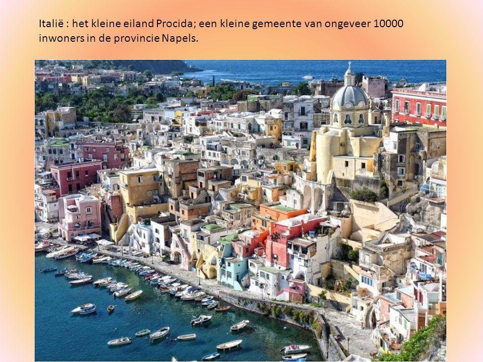 Italië : het kleine eiland Procida; een kleine gemeente van ongeveer 10000 inwoners in de provincie Napels.