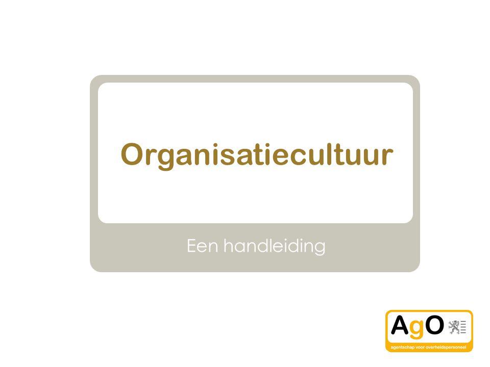 Organisatiecultuur Een handleiding