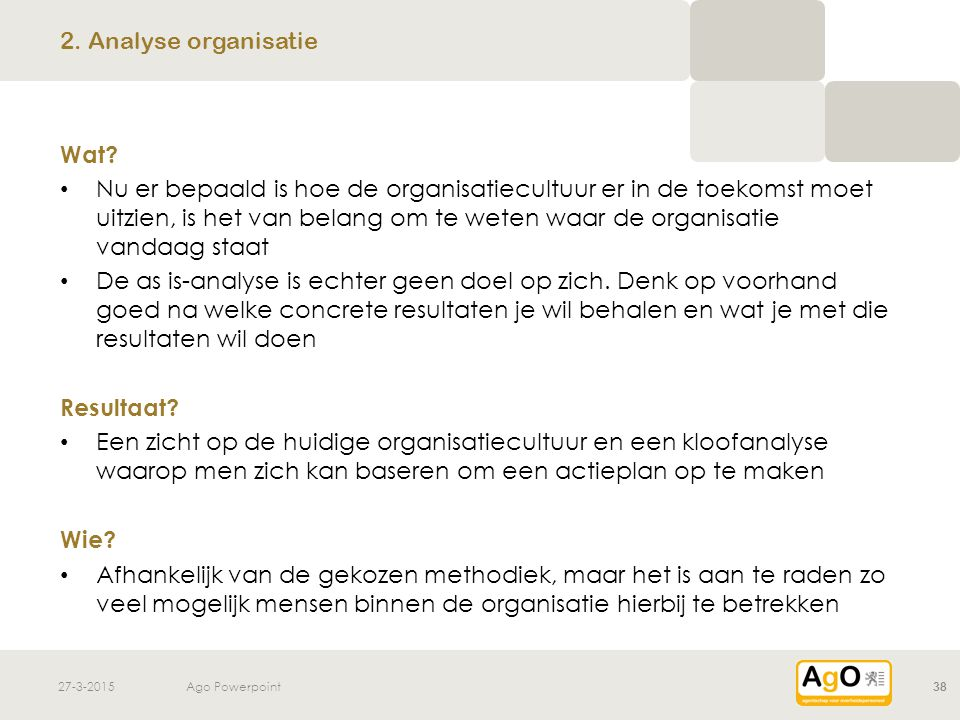 2. Analyse organisatie Wat
