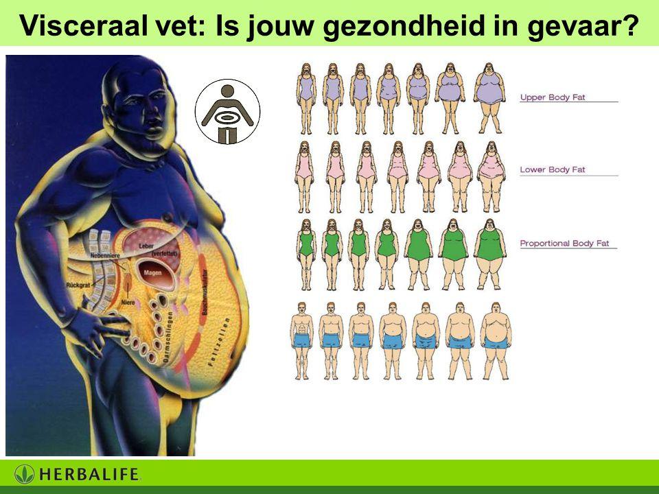 Visceraal vet: Is jouw gezondheid in gevaar