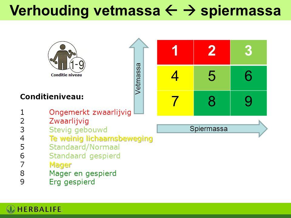 Verhouding vetmassa   spiermassa