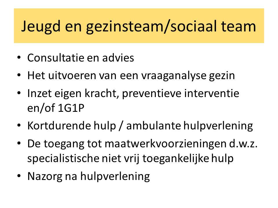 Jeugd en gezinsteam/sociaal team