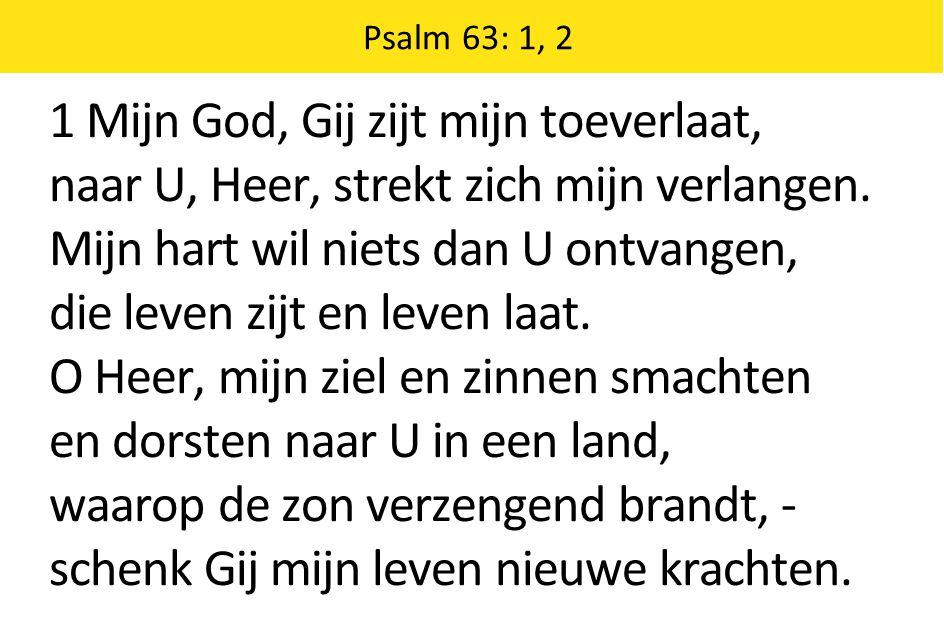 1 Mijn God, Gij zijt mijn toeverlaat,