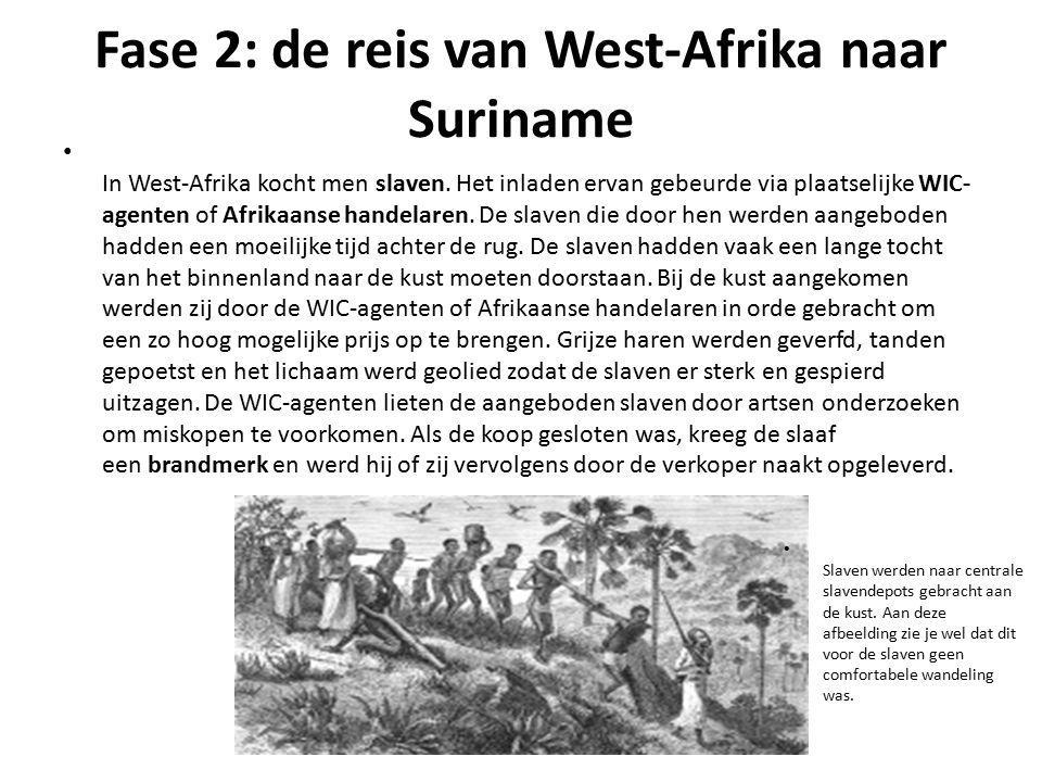Fase 2: de reis van West-Afrika naar Suriname