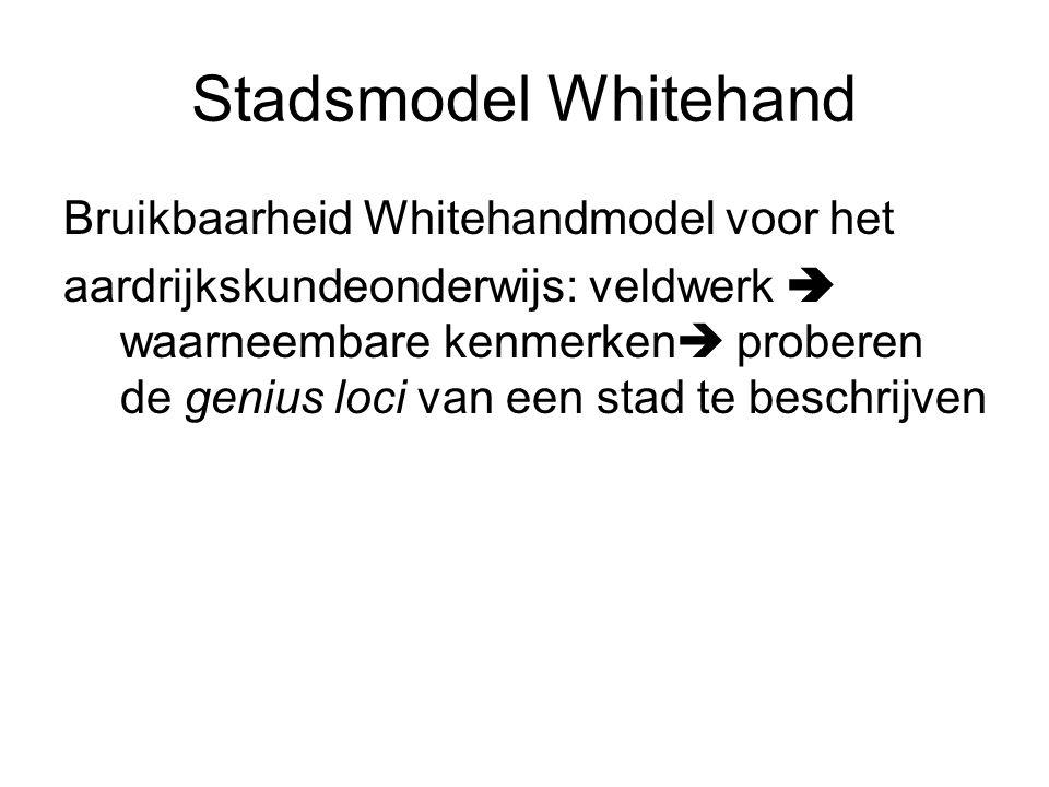 Stadsmodel Whitehand Bruikbaarheid Whitehandmodel voor het