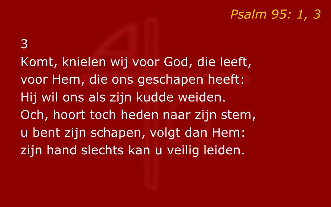 Psalm 95: 1, 3 3. Komt, knielen wij voor God, die leeft, voor Hem, die ons geschapen heeft: Hij wil ons als zijn kudde weiden.