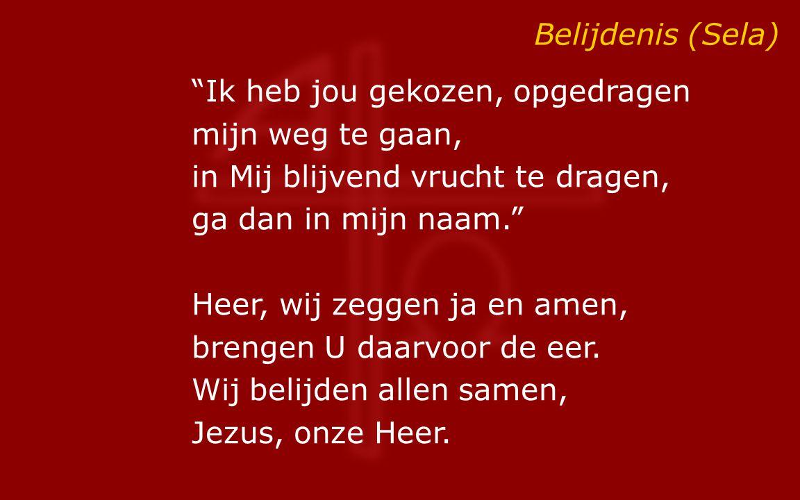 Belijdenis (Sela)