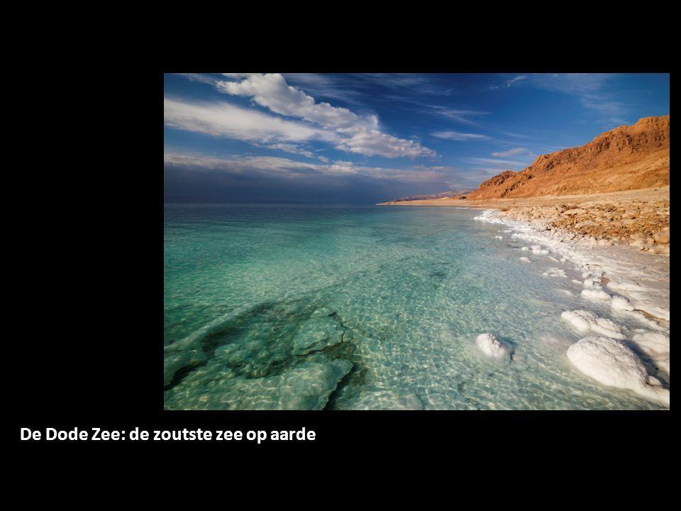 De Dode Zee: de zoutste zee op aarde