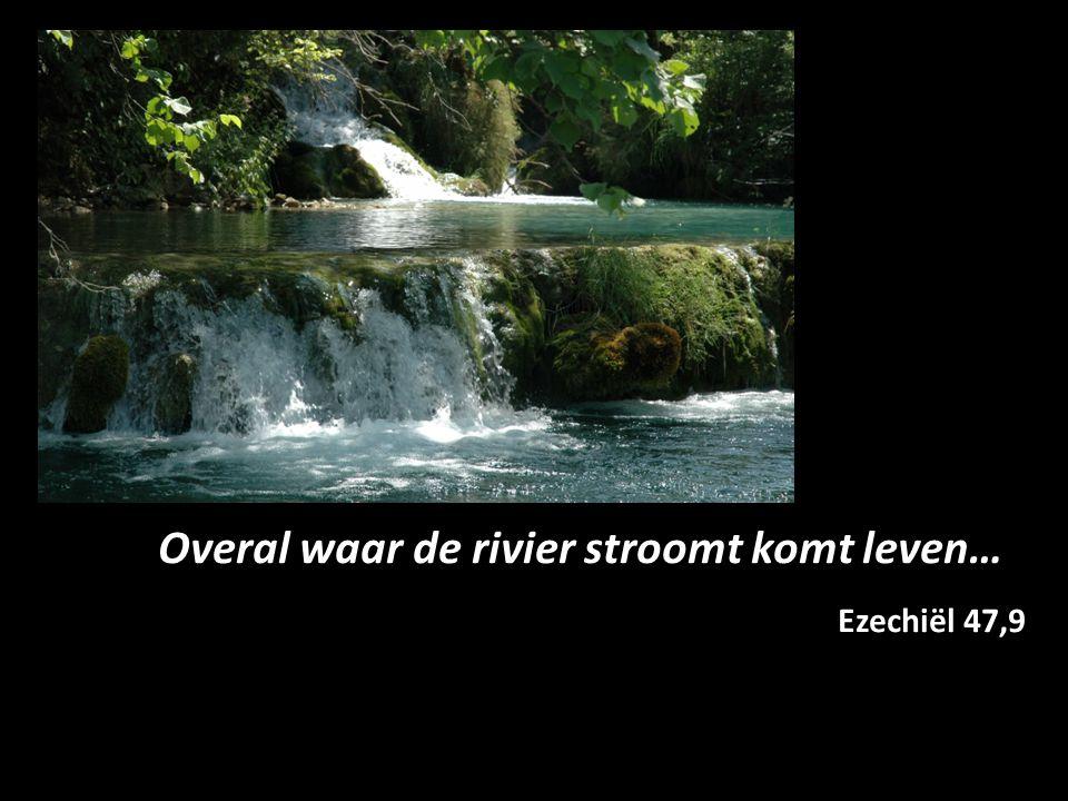 Overal waar de rivier stroomt komt leven…