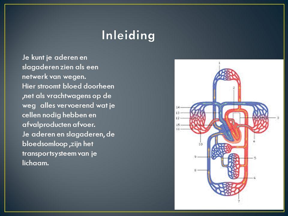 Inleiding Je kunt je aderen en slagaderen zien als een netwerk van wegen.