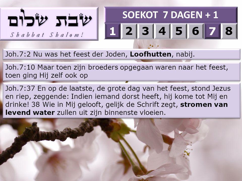 SOEKOT 7 DAGEN + 1 1. 2. 3. 4. 5. 6. 7. 8. 1. 7. Joh.7:2 Nu was het feest der Joden, Loofhutten, nabij.