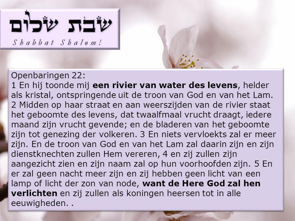 Openbaringen 22: