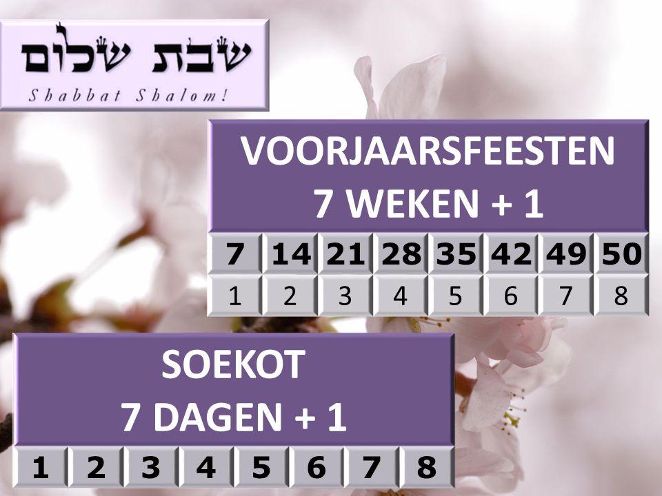 VOORJAARSFEESTEN 7 WEKEN + 1 SOEKOT 7 DAGEN + 1