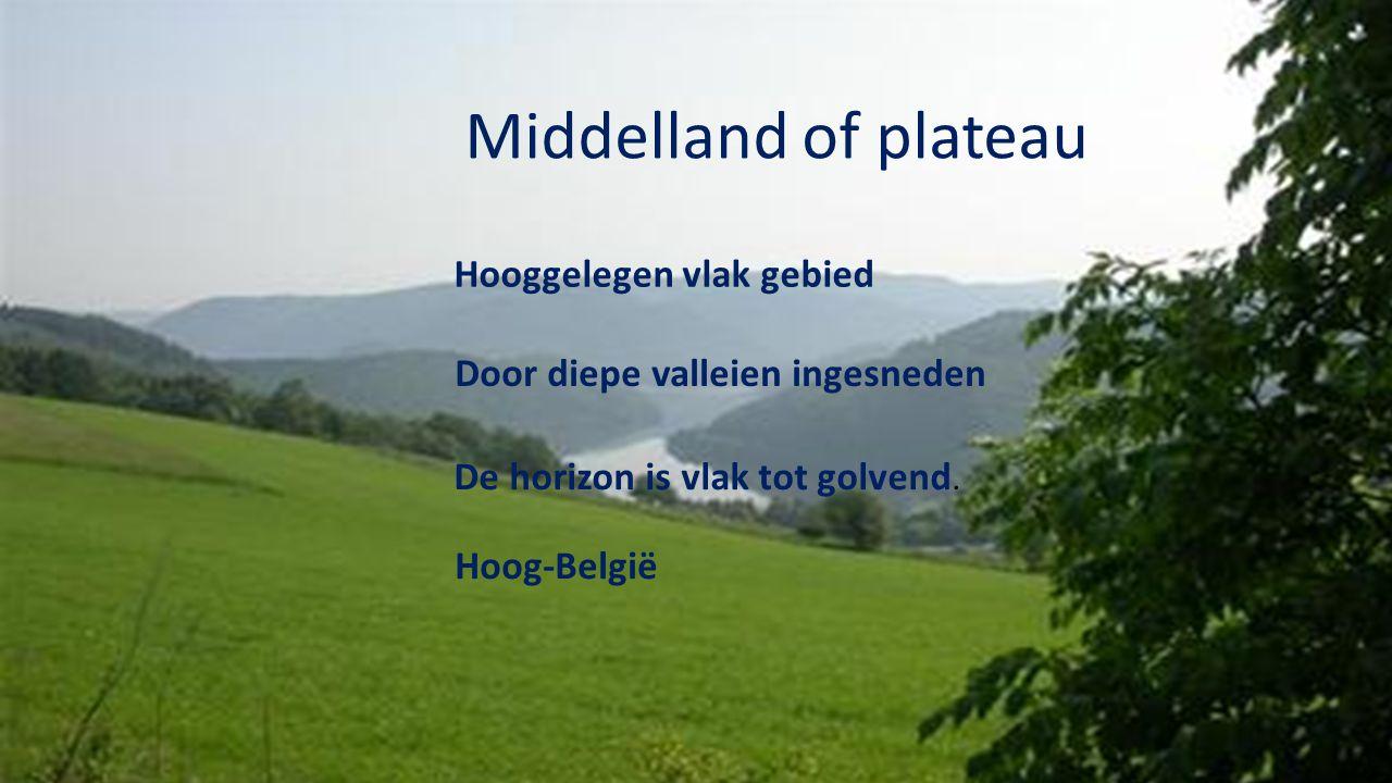 Middelland of plateau Hooggelegen vlak gebied