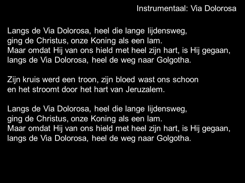 Instrumentaal: Via Dolorosa