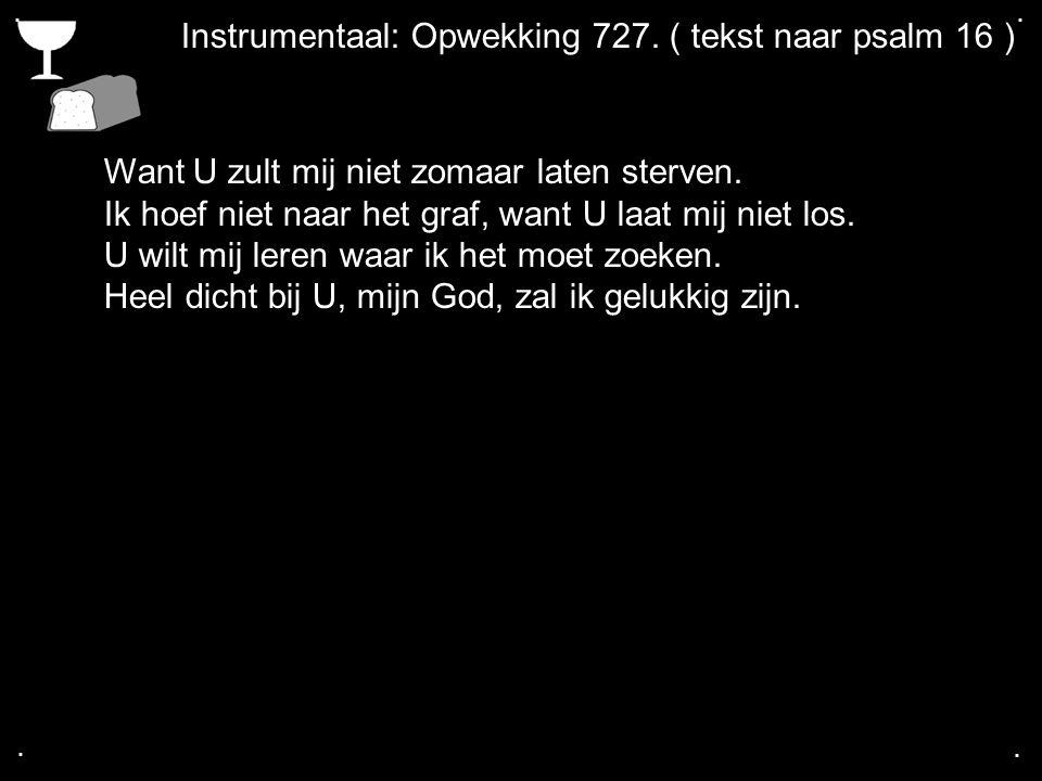 Instrumentaal: Opwekking 727. ( tekst naar psalm 16 )