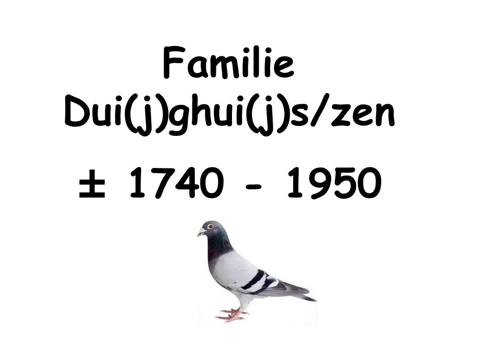 Familie Dui(j)ghui(j)s/zen