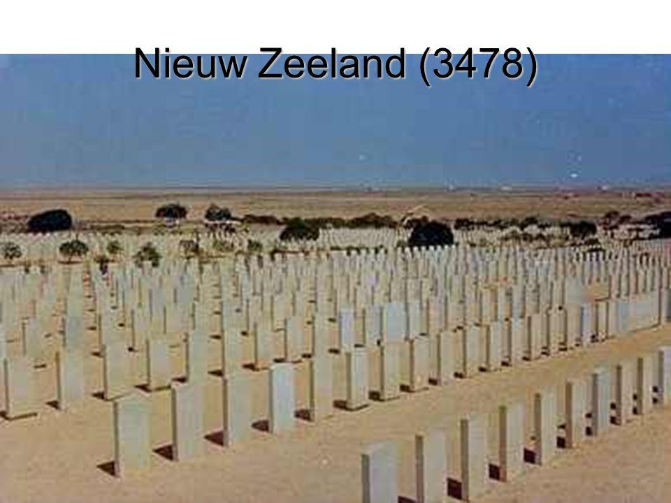 Nieuw Zeeland (3478)
