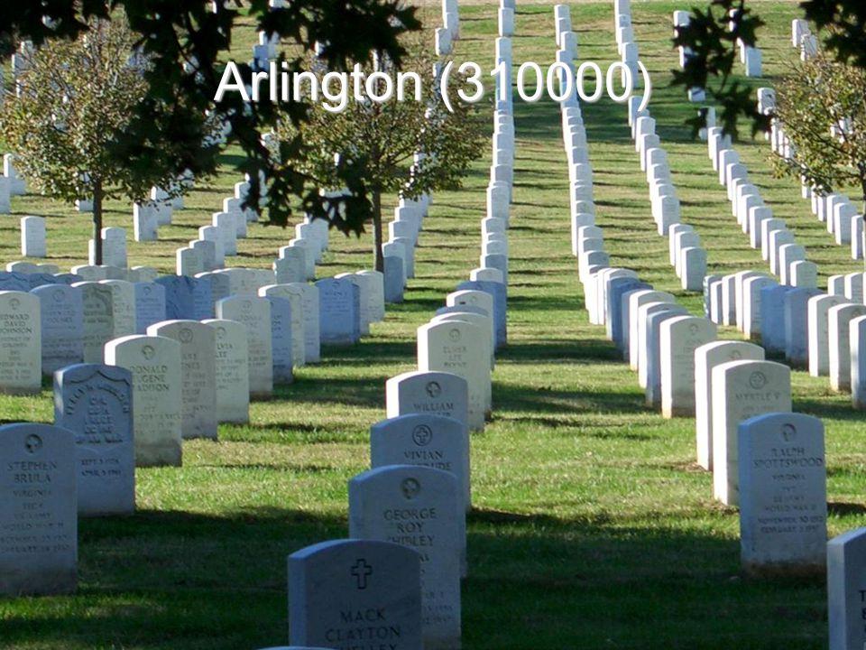 Arlington (310000)