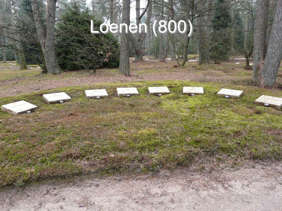 Loenen (800)