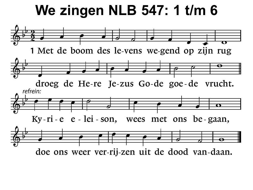 We zingen NLB 547: 1 t/m 6
