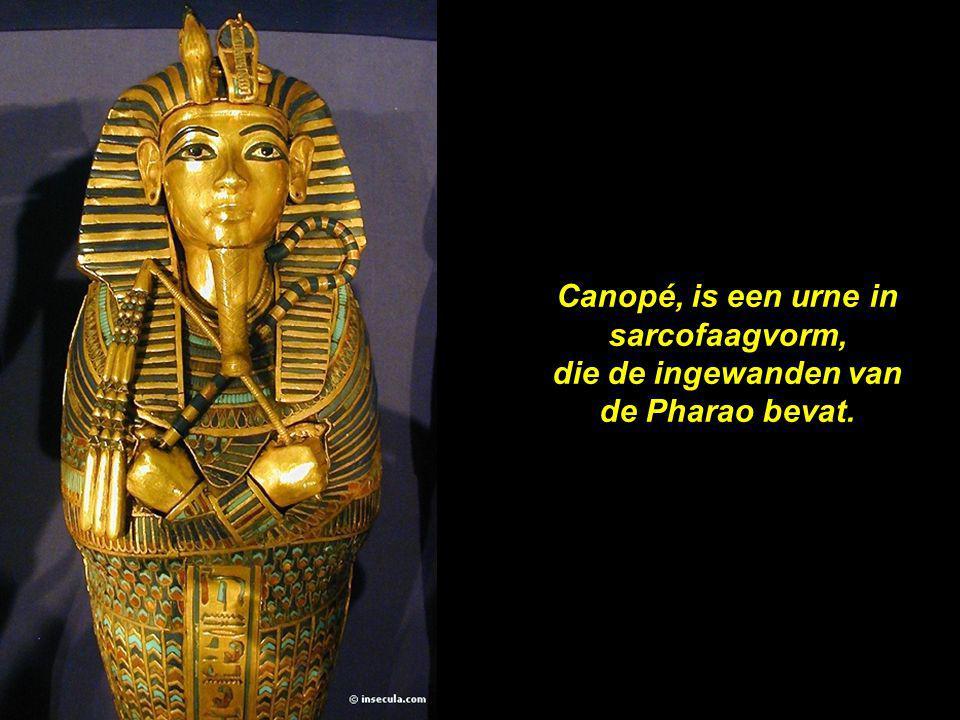 Canopé, is een urne in sarcofaagvorm, die de ingewanden van de Pharao bevat.