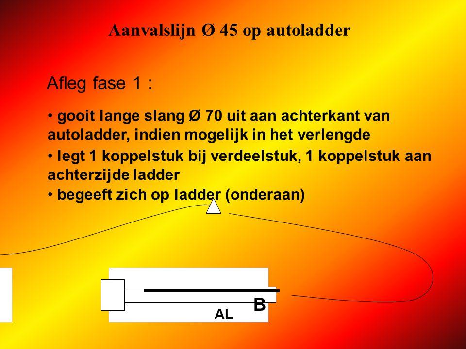 Aanvalslijn Ø 45 op autoladder