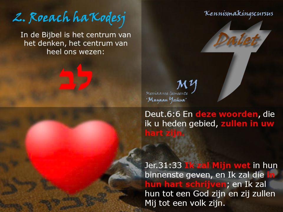 Deut.6:6 En deze woorden, die ik u heden gebied, zullen in uw hart zijn.
