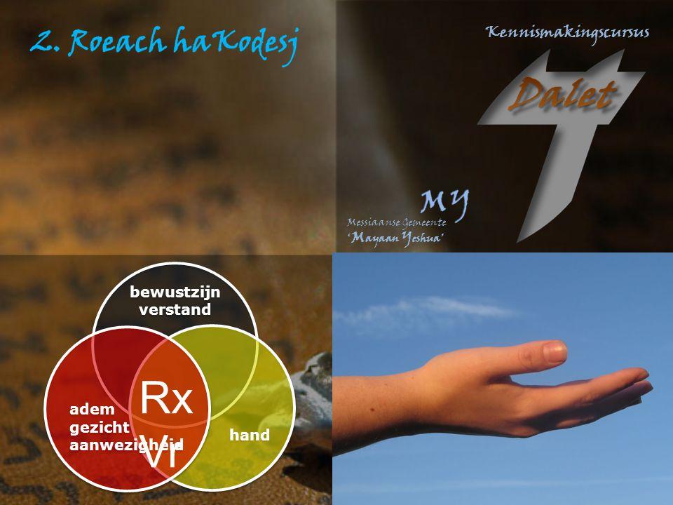 bewustzijn verstand hand adem gezicht aanwezigheid RxVr