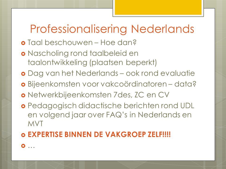 Professionalisering Nederlands