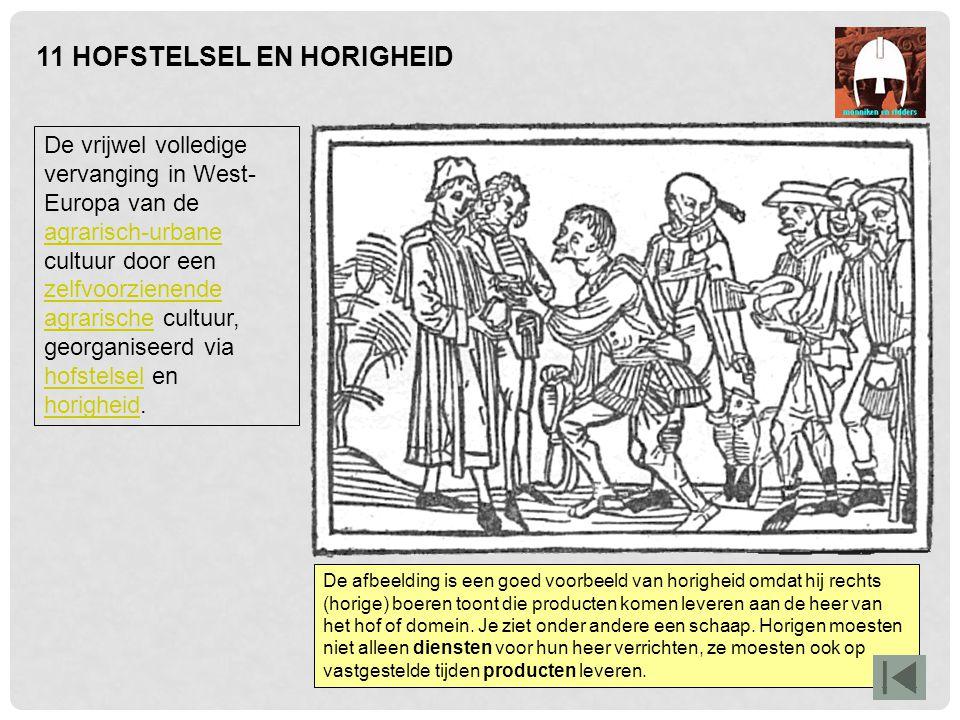 11 HOFSTELSEL EN HORIGHEID