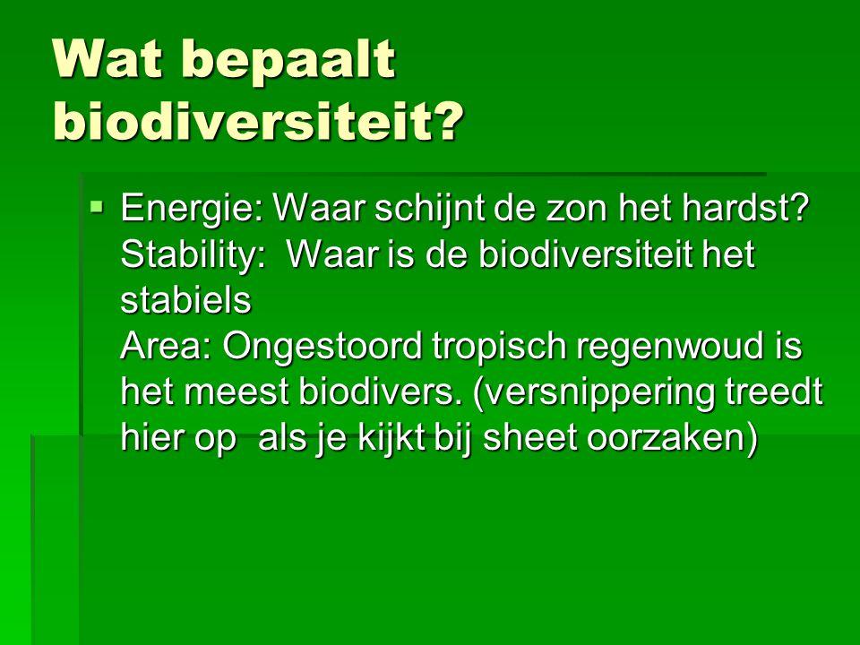 Wat bepaalt biodiversiteit