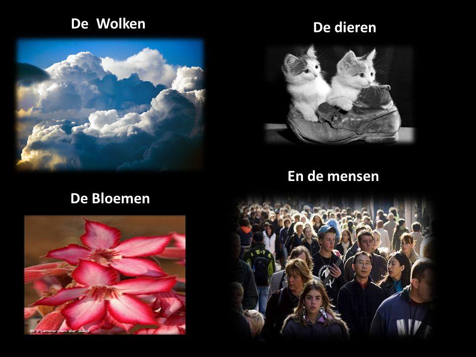 De Wolken De dieren En de mensen De Bloemen