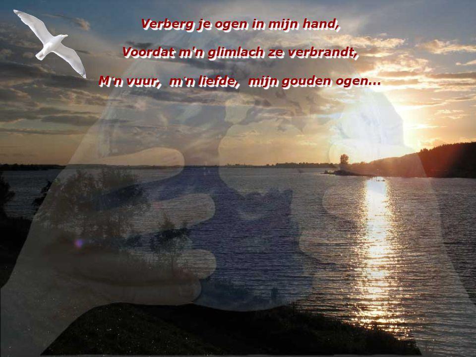 Verberg je ogen in mijn hand, Voordat m n glimlach ze verbrandt, M´n vuur, m´n liefde, mijn gouden ogen...