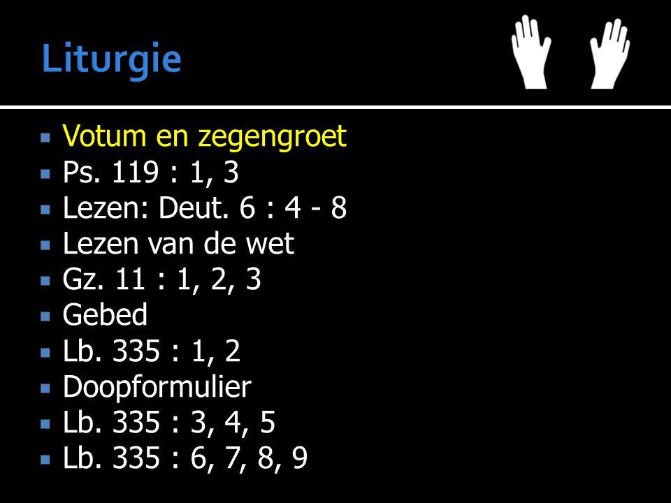 Liturgie Votum en zegengroet Ps. 119 : 1, 3 Lezen: Deut. 6 : 4 - 8