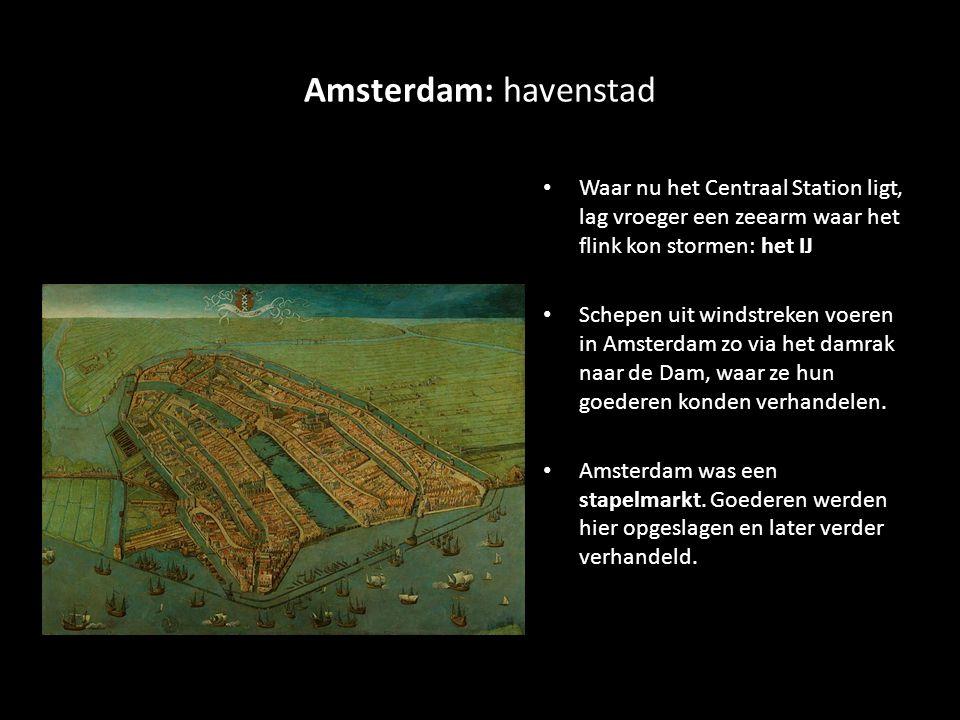 Amsterdam: havenstad Waar nu het Centraal Station ligt, lag vroeger een zeearm waar het flink kon stormen: het IJ.