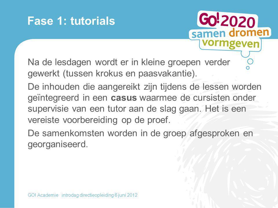 Fase 1: tutorials Na de lesdagen wordt er in kleine groepen verder gewerkt (tussen krokus en paasvakantie).